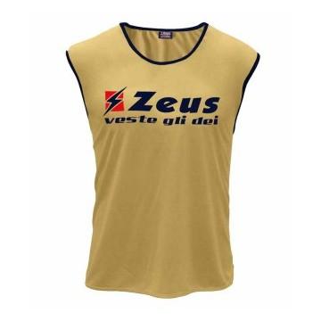 Maieu departajare Champions Zeus